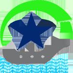 STAR SEA MANAGEMENT