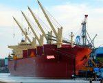 2010 Bulk Carrier General Cargo